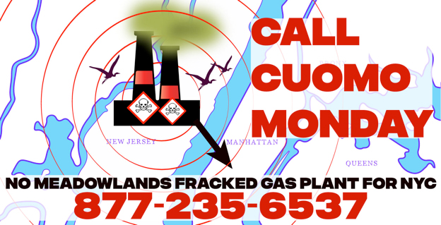 Tell Gov. Cuomo – No Meadowlands Power Plant!